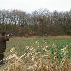 La chasse devant soi